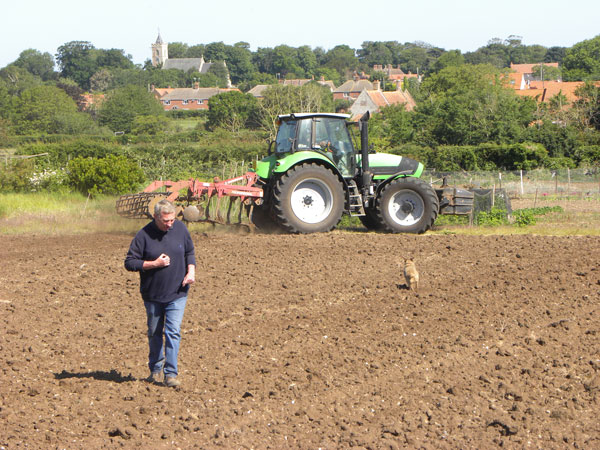 Our farmer inspects the ground during cultivation