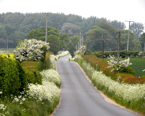 docking road to ringstead